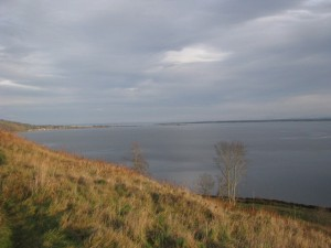 moray firth and chanonry